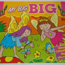 Kleur -en posterboek Elfen