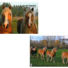 Schetsboek paard A3, met spiraal (120 gram)