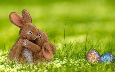Leuke weetjes over Pasen!