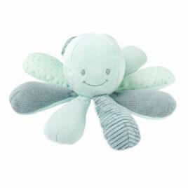 nattou lapidou activiteiten octopus mint